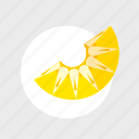 application, c, color, cooking, food, fruit, game, healthy, kitchen, pineapple, play, vegetable icon