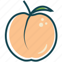 fruit, fruits, healthly, peach icon