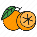 lime, organic, food, healthy, diet, fruit, fresh icon