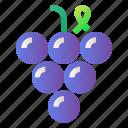 food, fresh, fruit, grape, healthy, wine