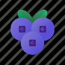 blueberry, berry, fresh, fruit, healthy, sweet, juicy