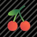 cherry, fruit, berry, sweet, food, juicy, ingredient