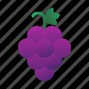 grape, food, healthy, fruit, berry, sweet, juicy