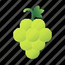 green grapes, grape, food, healthy, fruit, berry, juicy