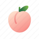 peach, organic, sweet, fruit, food, juicy, fresh
