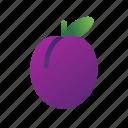 plum, food, fruit, healthy, sweet, juicy, berry