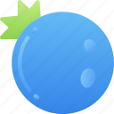 blueberry, eating, food, fruit, health icon