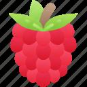 eating, food, fruit, health, raspberry icon