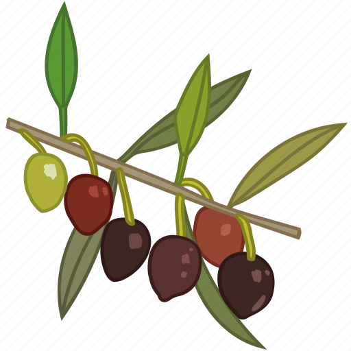 flavor, olive, olive oil, olive tree, olives icon