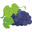 flavor, fruit, grape, grape juice, grapes icon