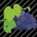 flavor, fruit, grape, grape juice, grapes