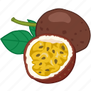 flavor, fruit, passiflora edulis, passionfruit icon