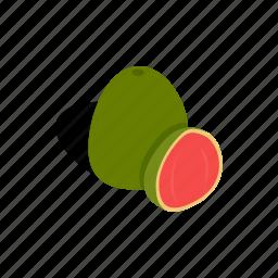 fresh, freshness, green, guava, isometric, ripe, tropical icon