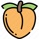 eating, food, fruit, health, peach icon