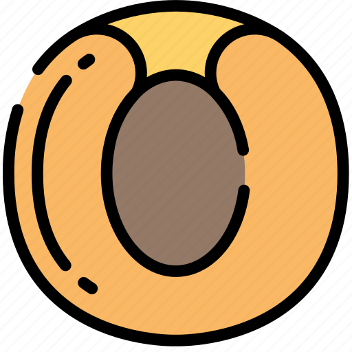Apricot, eating, food, fruit, health icon - Download on Iconfinder