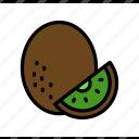 dessert, food, fruit, kiwi, summer, sweet, tropical