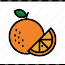 dessert, food, fruit, juice, orange, summer, sweet