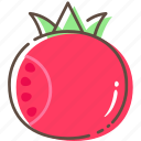 pomegranate, fruit, healthy, food