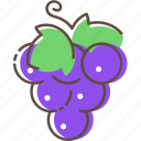 grape, fruit, healthy, food