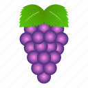 food, fruit, fruits, grape, grapes, tropical icon