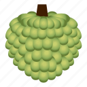 diet, food, fruit, healthy, healthy food, sugar apple, vegetarian icon