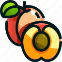 apricot, food, fruit, fruits, healthy icon