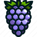 food, fruit, fruits, grape, healthy icon