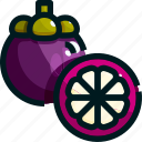healthy, fruit, mangosteen, food, fruits icon