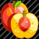 food, fruit, fruits, healthy, nectarine icon