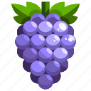 food, fruit, fruits, grape, healthy