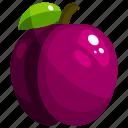 food, fruit, fruits, healthy, plum