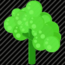 brocolli, food, healthy, nutritious, vegetables icon