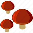food, fungus, mushroom, mushrooms, toadstool icon