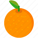 citrus, food, fruit, healthy, orange icon