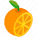citrus, food, fruit, half, healthy, orange icon