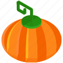 food, fresh, healthy, pumpkin, vegetables icon
