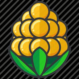 corn, crop, food, health, organic, vegetable icon
