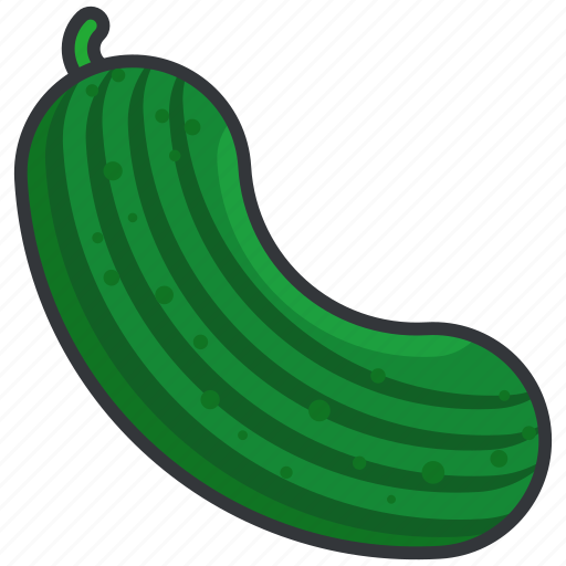 courgette, food, health, organic, vegetable icon