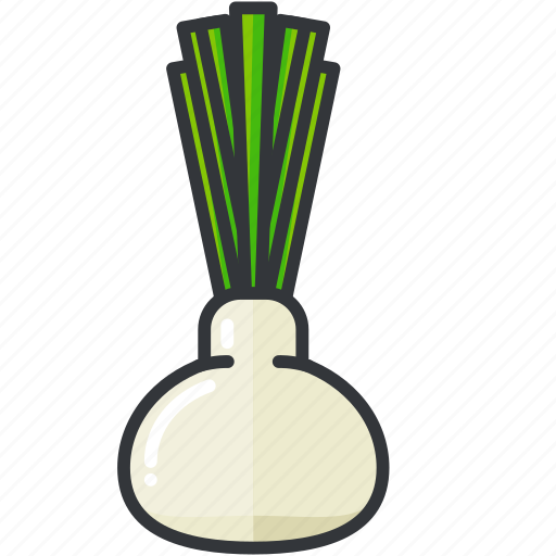 fennel, food, health, organic, vegetable icon