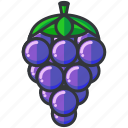 food, fruit, grapes, health, organic icon