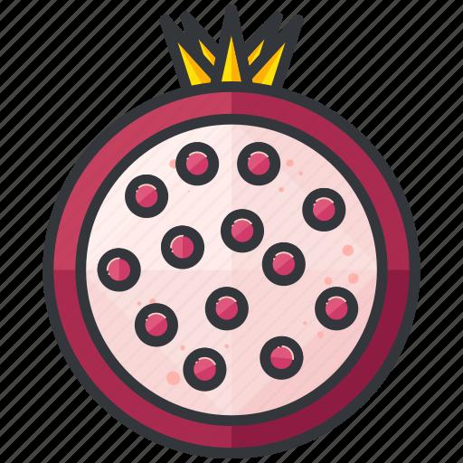 food, fruit, grenade, health, organic icon