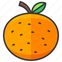 food, fruit, health, orange, organic icon