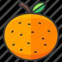 food, fruit, health, orange, organic