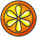 food, fruit, health, orange, organic, slice icon