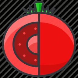 food, health, organic, salad, tomato, vegetable icon