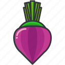 food, health, organic, turnip, vegetable icon