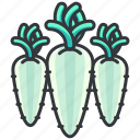 food, meal, vegetable, vegetables icon