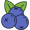 blueberries, food, fruit, healthy, vitamins icon