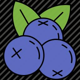 blueberries, food, fruit, healthy, vitamins icon