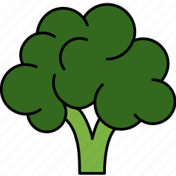 brocolli, food, healthy, vegetable, vitamins icon